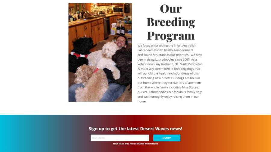 Desert Waves Labradoodles - website screenshot - breeding program