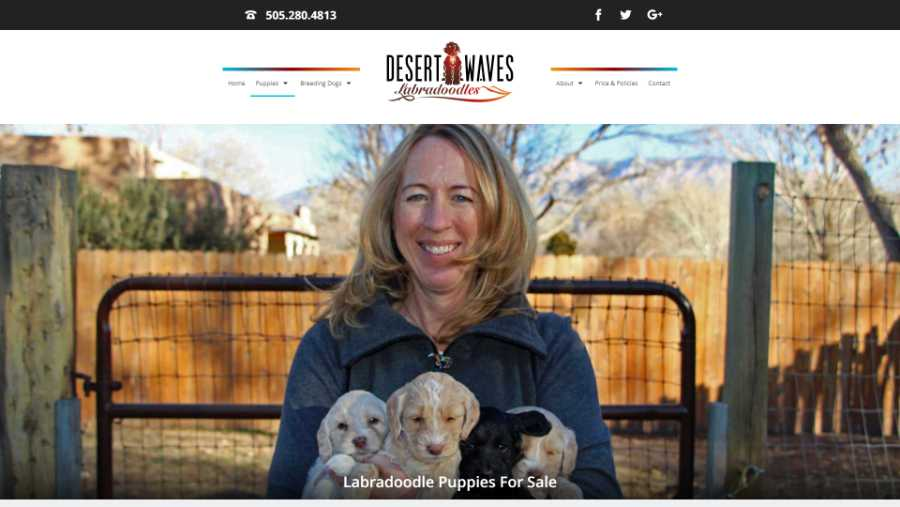 Desert Waves Labradoodles - website screenshot - available puppies