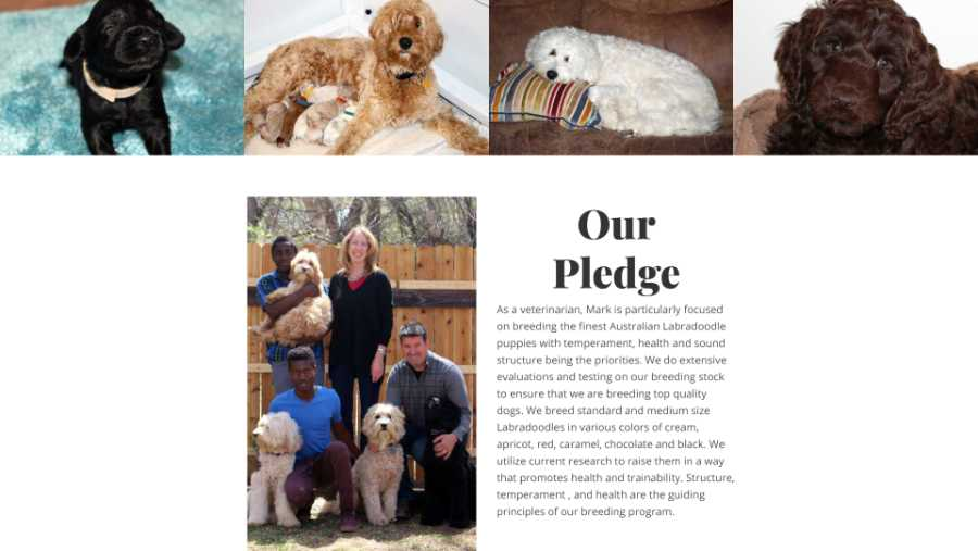 Desert Waves Labradoodles - website screenshot - our pledge