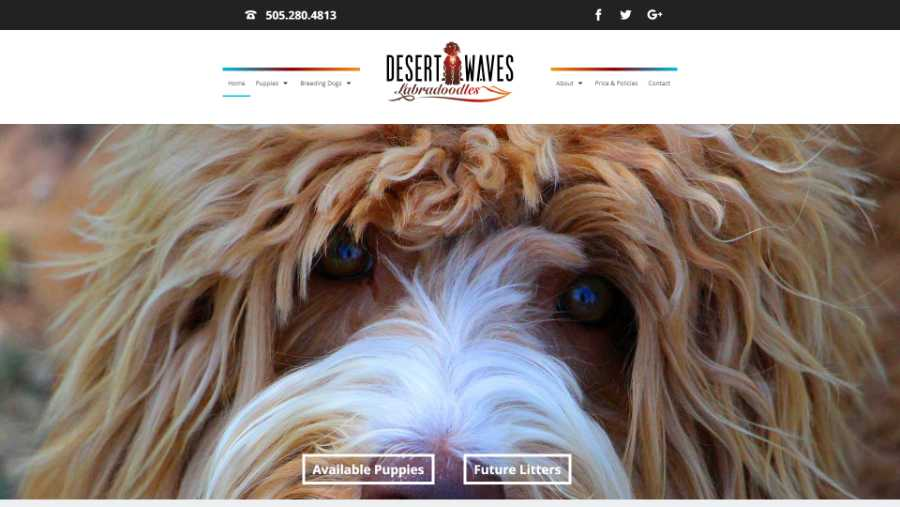 Desert Waves Labradoodles - website screenshot - hm splash