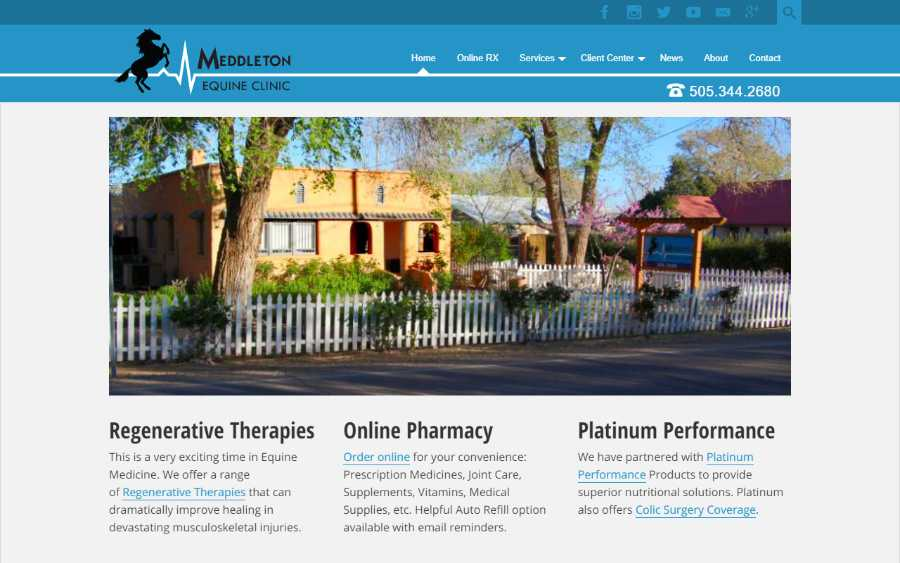 Meddleton Equine Clinic - desktop screenshot - home page