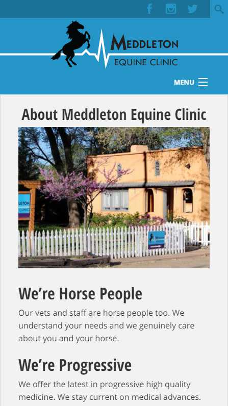 Meddleton Equine Clinic - mobile website screenshot - about page