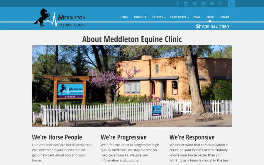 Meddleton Equine Clinic - desktop screenshot - about page