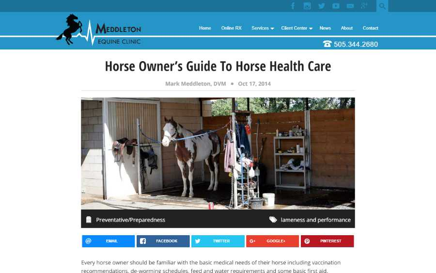 Meddleton Equine Clinic - desktop screenshot - blog post