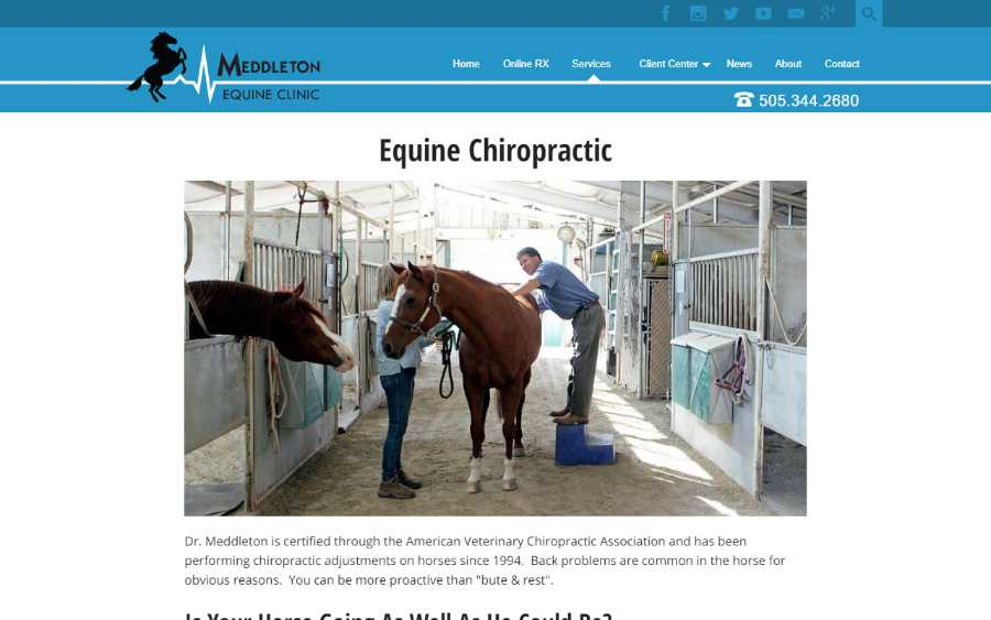 Meddleton Equine Clinic - desktop screenshot - chiropractic