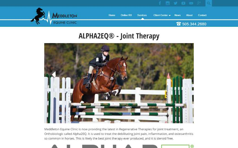 Meddleton Equine Clinic - desktop screenshot - joint therapy service