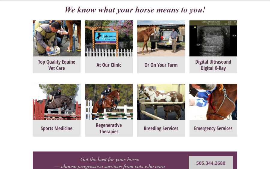 Meddleton Equine Clinic - desktop screenshot - services page
