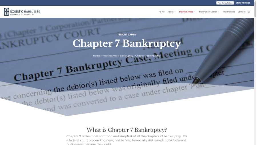 screenshot - chapter 7 bankruptcy page