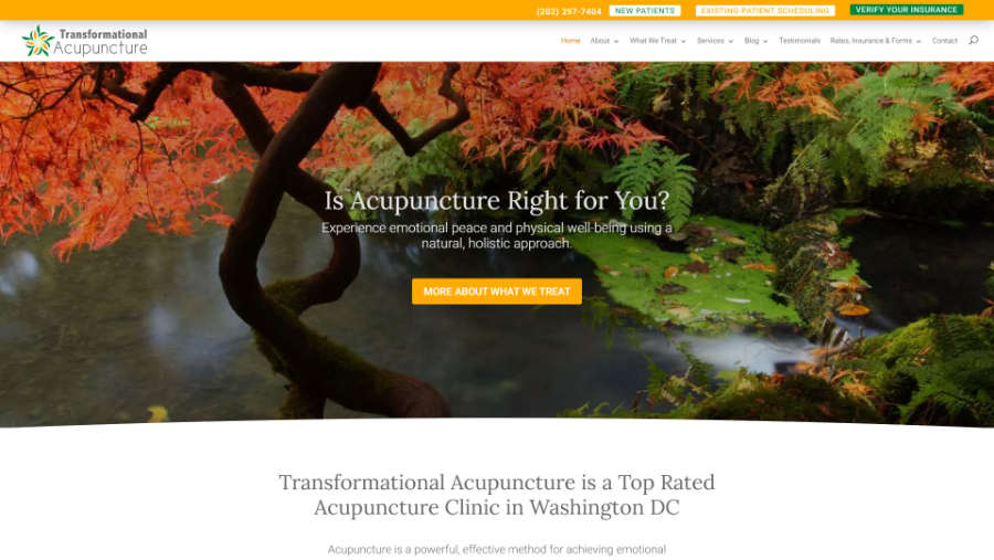 Transformational Acupuncture - - Desktop screenshot